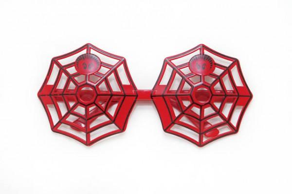 クモの巣のトイサングラス