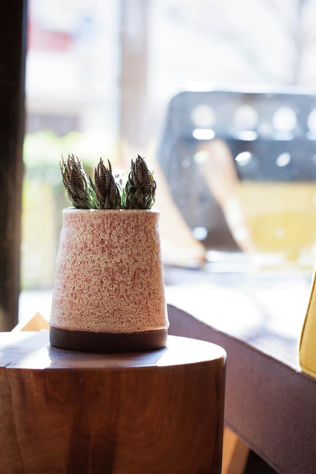 ITEM 鉢植え BRAND Adam Silverman MODEL Gardening Pottery