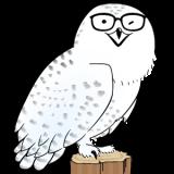 森野owlina