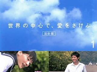 泣けるドラマおすすめ 世界の中心で、愛をさけぶ DVD